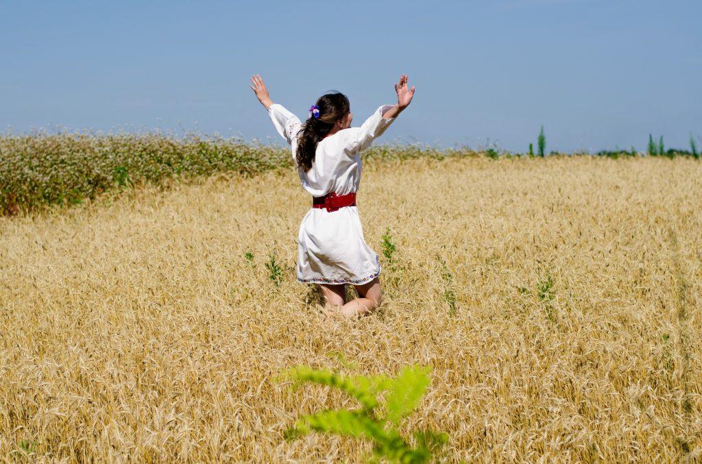 На пшеничному полі